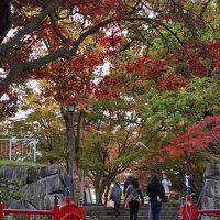 紅葉狩りドライブ  盛岡城跡公園から鶯宿温泉に。雄大な岩手山を望む