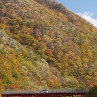 紅葉狩り  釜石、仙人峠の紅葉を楽しむ