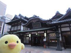 愛媛県松山市と砥部をたびするトリ
