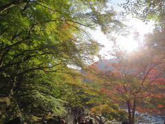 紅葉の名所「香嵐渓」へドライブ