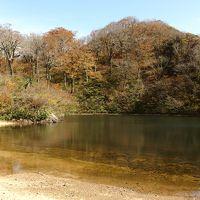 紅葉も最高潮 秋晴れの1日 夜叉姫伝説の夜叉が池に登る♪
