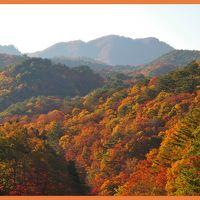 錦繍で彩られた山々に囲まれて・・・面白山高原の紅葉は・・・やっぱり絶景だ~~!