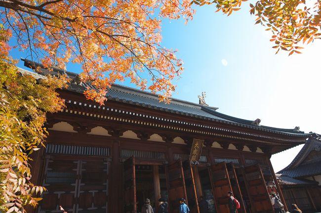 【幕末めぐり】<br />幕末が好き、カメラが好きで、今回は会津に向かいました。会津藩校日進館に行ってみたく楽しみにしていました。また西軍砲陣跡にも行きました。参考にしてもらえれば幸いです。<br /><br /><br /><br /><11/5(土)><br />08:30 会津東山温泉 御宿東鳳<br />09:00 レンタカー店<br />10:00 會津藩校日新館<br />    福島県会津若松市河東町南高野字高塚山10<br />    http://www.nisshinkan.jp/<br />12:15 如来堂(新選組殉難地)<br />    福島県会津若松市花見ヶ丘3丁目<br />12:50 小田山公園 西軍砲陣跡<br />    福島県会津若松市花見ヶ丘3丁目<br />    http://www.aizukanko.com/spot/141/<br />13:40 会津若松城<br />14:00 レンタカー店<br />    徒歩<br />14:10 会津若松駅<br />15:06 会津若松駅<br />    JR磐越西線快速・郡山行<br />16:20 郡山<br />16:30 郡山<br />    JR新幹線やまびこ146号・東京行<br />17:48 東京<br />18:03 東京<br />    JR新幹線ひかり525号・名古屋行<br />18:42 熱海<br />19:00 熱海<br />    JR伊東線・伊東行<br />19:24 伊東<br />    とんかつみその<br />20:26 伊東<br />    伊豆急行・伊豆急下田行<br />20:29 南伊東<br />20:40 伊東温泉 鈴伝荘(朝あり・夕なし)<br />    静岡県伊東市広野4-1-13        <br />    http://travel.rakuten.co.jp/HOTEL/69246/69246.html