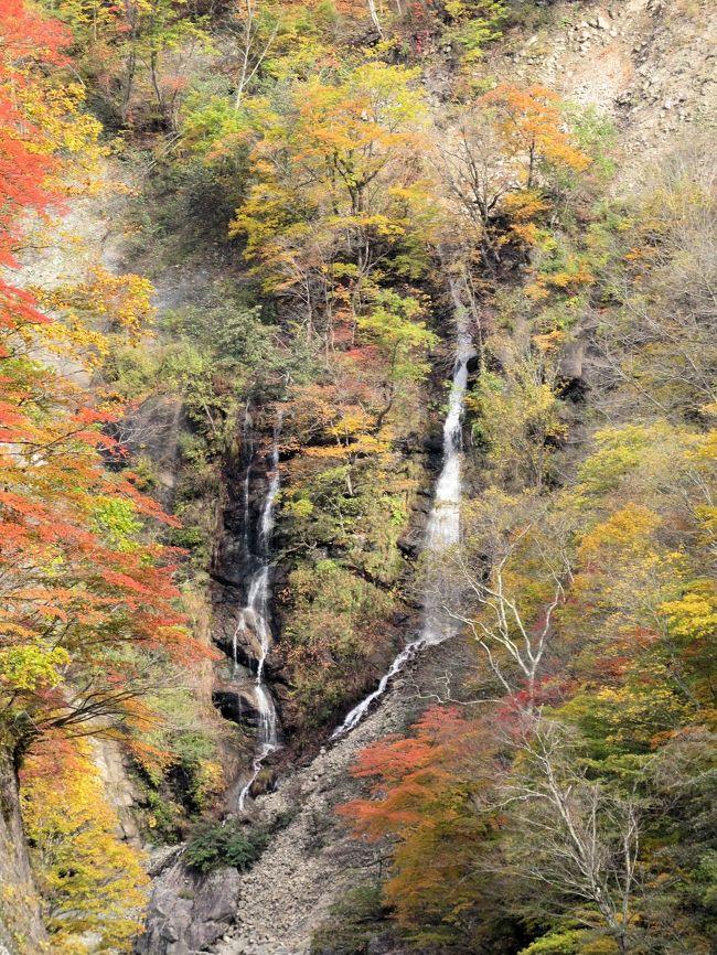 信越秋山郷の紅葉・・栄村のとねんぼと天池、のよさの里、夫婦滝、布岩をめぐります。