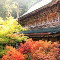 福井の旅:永平寺~丸岡城
