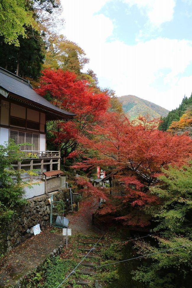 兵庫県人でも読み書きできる人が少ない兵庫県の西中部にある森林王国、宍粟市の紅葉めぐりをしてきました。<br />ここの紅葉は、兵庫県でも六甲山を除き、早い時期から紅葉が楽しめるところです。<br />今回行ったのは、日本の滝百選にも選ばれている原不動滝とフォレストステーション波賀に福知渓谷の3個所です。<br />何れもとてもきれいな紅葉でした。<br />ただ天気予報が外れ、晴天でなかったのがとても残念です。<br />ここの紅葉は20日頃まで楽しめると思います。