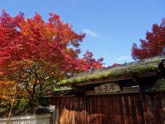 京都の紅葉2016「大原と岩倉実相院」