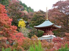 北摂の紅葉の名所・勝尾寺へ