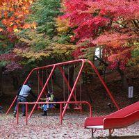 風立ちぬ 今は秋・・・の尾関山