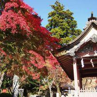 <坂東三十三観音巡礼・つくば編1>秋色に染まる筑波山・研究学園都市は紅葉の見頃です!