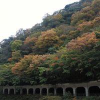 函嶺洞門の紅葉はもう少し先(11月17日)