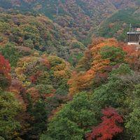 箱根の紅葉はまだまだ見頃(11月17日)