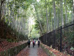 紅葉を愛で京の筍の産地、竹の径から唐戸越えを歩く