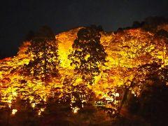 香嵐渓のライトアップと竹灯りの香積寺
