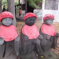 九品仏をぶらり。「浄真寺」、なかなかいいです。ついでに、慶大日吉にも行ってきました!