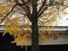 晩秋の京都をてくてく ②二条城と神泉苑