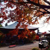 両子寺の紅葉2016