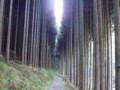 京都比叡山、北山を歩く