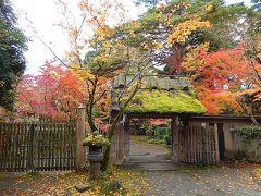 一年ぶりに九州旅行をする④由布院観光その〔1〕玉の湯、亀の井別荘、金鱗湖付近を歩く