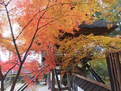 一年ぶりに九州旅行をする⑤由布院観光その〔2〕佛山寺、梅園、由布院駅にて