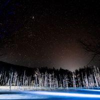 美瑛 ☆秋から冬へ季節の移ろい『なごり色』を探して☆ 「青い池ライトアップ始まる!」