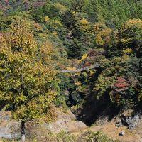 紅葉の大井川鐵道と接岨峡の旅 2016(静岡)