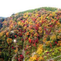 秋を求めて in 夢の大吊橋 (九重)
