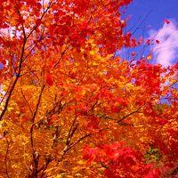 今年の紅葉も綺麗でした(塩原〜上三依)