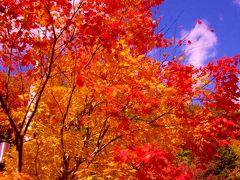 今年の紅葉も綺麗でした(塩原~上三依)