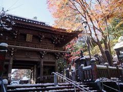 <東京紅葉散歩・2>天狗微笑む高尾山「雪と紅葉の薬王院」名物・ごまだんごもいかが?