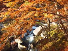 紅葉以上雪未満  晩秋の甲州(猿橋・昇仙峡)