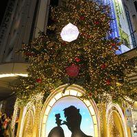キラキラを求めて:。゚。★:゚*☆2016 Christmas illumination★:゚*☆。゚。