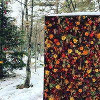 軽井沢の紅葉は終わっちゃったけど、プラチナバーゲンがあるさ、、あれっ雪景色も!!