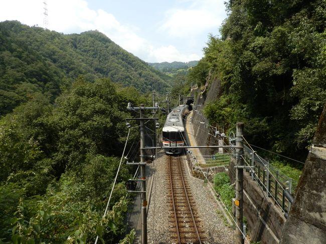 前回の広島旅行から一週間。<br />お盆休みを使い飯田線の秘境駅を巡りに出かけました。<br /><br />ここでは前回からの続き(→ http://4travel.jp/travelogue/11182023 )<br />大嵐駅から30分少々。田本駅に着きました。<br />田本駅も小和田駅と同様に駅まで車道が通じていません。さらに駅は断崖絶壁にあり、なぜこんなところに駅を作ったのかと思います。<br />さらに、豊橋行きに戻り、天竜川沿いにある為栗駅へ。<br /><br />こちらへ駅まで舗装道路が続いており、秘境度は落ちますが、川沿いにありのんびりできました。<br /><br />最後に天竜峡の手前、金野駅へ。こちらも駅周辺に何もない秘境の駅という感じでした。<br /><br /><br /><br />【行程】<br />豊橋(6:00)→普通・天竜峡行き→中井侍(8:22)<br />中井侍(8:43)→普通・豊橋行き→小和田(8:49)<br />小和田(10:12)→普通・中部天竜行き→大嵐(10:17)<br />大嵐(11:14)→普通・天竜峡行き→田本(11:50)<br />田本(13:10)→普通・豊橋行き→為栗(13:18)<br />為栗(13:45)→普通・岡谷行き→金野(14:08)<br />金野(15:17)→普通・豊橋行き→豊橋(18:24)<br />豊橋(18:31)→普通・浜松行き→浜松(19:07)<br />浜松(19:20)→こだま676号・東京行き→静岡(19:46)<br />静岡(20:20)→ホームライナー沼津8号→沼津(21:00)<br />沼津(21:03)→普通・熱海行き→熱海(21:22)<br />