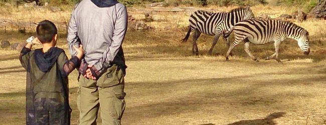 ンゴロンゴロ自然保護区周辺 旅行 クチコミガイド【フォー