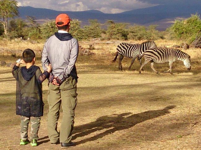 旅太郎ついにアフリカへ!<br />動物好きの息子を見て「いつかアフリカでサファリをしよう」と夢見て早や数年、ついに実現することができました♪<br /><br />行き先はタンザニア。数ある国立公園でも人気No.1のセレンゲティと、定番のンゴロンゴロ保全地域でサファリを満喫し、その後はインド洋に浮かぶザンジバルに渡ってのんびりリゾート(^^)<br /><br />前半はンゴロンゴロ保全地域編です。<br />特殊な地形のクレーター内でのサファリは次々にいろんな動物が現れ、サファリの初日にうって付け!泊まったロッジの庭にも動物達が遊びに来て、アフリカすごい!と大満足の滞在となりました。<br />旅太郎67回目の海外旅行☆<br /><br />★2016/11/19(土):羽田→<br />★2016/11/20(日):ドーハ→アルーシャ<br />★2016/11/21(月):アルーシャ→ンゴロンゴロ<br />★2016/11/22(火):ンゴロンゴロ→セレンゲティ<br />☆2016/11/23(水):<br />☆2016/11/24(木):セレンゲティ→ザンジバル<br />☆2016/11/25(金):<br />☆2016/11/26(土):<br />☆2016/11/27(日):ザンジバル→アルーシャ(キリマンジャロ)→<br />☆2016/11/28(月):ドーハ→成田