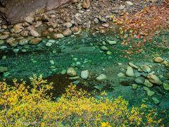 2016年最後の山中湖ロッジ滞在記(2) ~ユーシン渓谷、ここは関東の九塞溝かプリトヴィツェか?~
