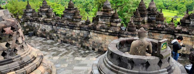 インドネシア 密林に隠された曼荼羅 ボ...