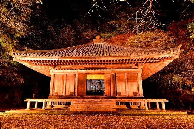 2018年に開山1300年を迎える六郷満山のキックオフイベント「六郷満山開山1300年 ライトアップイベント2016」として、富貴寺でライトアップが開催されました。