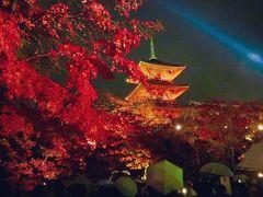 やっぱり京都の紅葉が最高!2016 週末京都旅 【 前編 】高台寺・圓徳院・清水寺ライトアップ