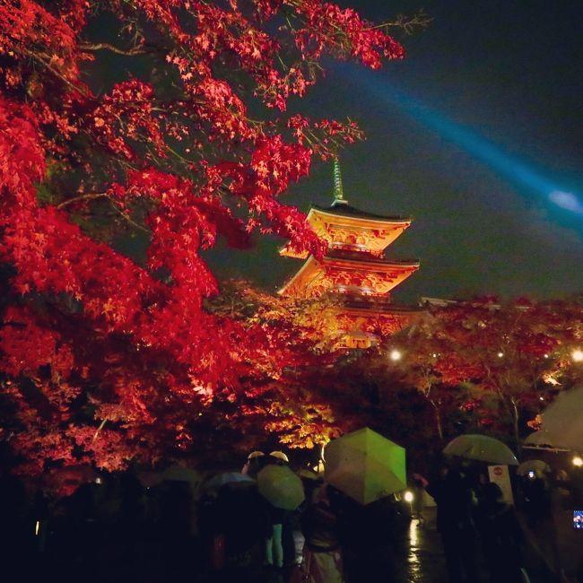 先日行ったソウルの紅葉も素敵でしたが( http://4travel.jp/travelogue/11186335 ) 、やっぱり日本の紅葉も観ておかなきゃね~♪<br /><br />11月最終週末に、京都の紅葉と寺社巡り(御朱印)を目的に、女友達と一泊で京都に行ってきました。<br /><br />観光客の多さに驚く一方、秋の京都の素晴らしさを再認識した今回の旅。<br />ほぼ紅葉の写真集のような旅行記になってますが、美しい日本をお届け出来たら幸いです。<br /><br />【前編】は、高台寺、圓徳院、清水寺のライトアップ紅葉をまとめました。<br />【後編】は、紅葉スポットの東福寺、永観堂の圧巻の紅葉の様子を、更に特別拝観の霊鑑寺や安楽寺など東山界隈を中心にまとめました。<br />https://4travel.jp/travelogue/11216658<br /><br />《表写真》清水寺の三重塔