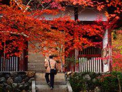 2016年最後の紅葉は嵯峨野常寂光寺で。