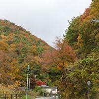 丹波篠山の紅葉狩り(6)完 帰りの道(県道12号線)で、全山紅葉に出会いました。