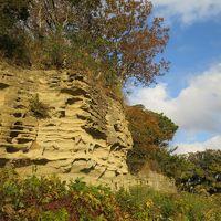 鎌倉 名越切通から衣張山を散策する