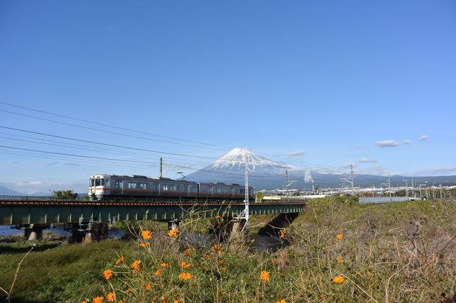中央公園・米の宮公園など潤井(うるい)川沿いをウロウロ…。<br /><br />※位置情報、一部不明確な場所があります。<br />予めご了承下さい。<br /><br />★富士市役所のHPです。<br />http://www.city.fuji.shizuoka.jp/<br /><br />★ふじのくにアートクラフトフェアのHPです。<br />http://www.papapa-art.com/fujinokuni/