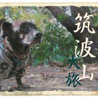 犬旅 ~筑波山~