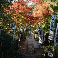 ちょいと鎌倉まで散歩。