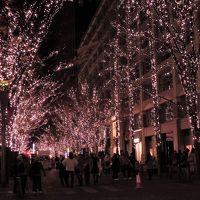 恒例女子会 今年のイルミネーションは丸の内、そしてそれぞれのクリスマスツリー・:*:・゚☆