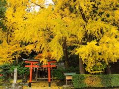黄葉の岩戸落葉神社~美山かやぶきの里へ