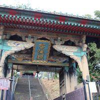 トトロの森を歩いたらお寺のテーマパーク?狭山不動尊へ